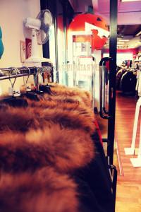 negozio 13